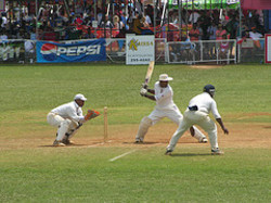 Photo: Bermuda Cup cricket match