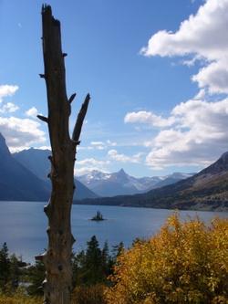 Photo: Montana