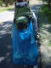 Photo: Trash Bag