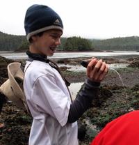Photo: Sea cucumber