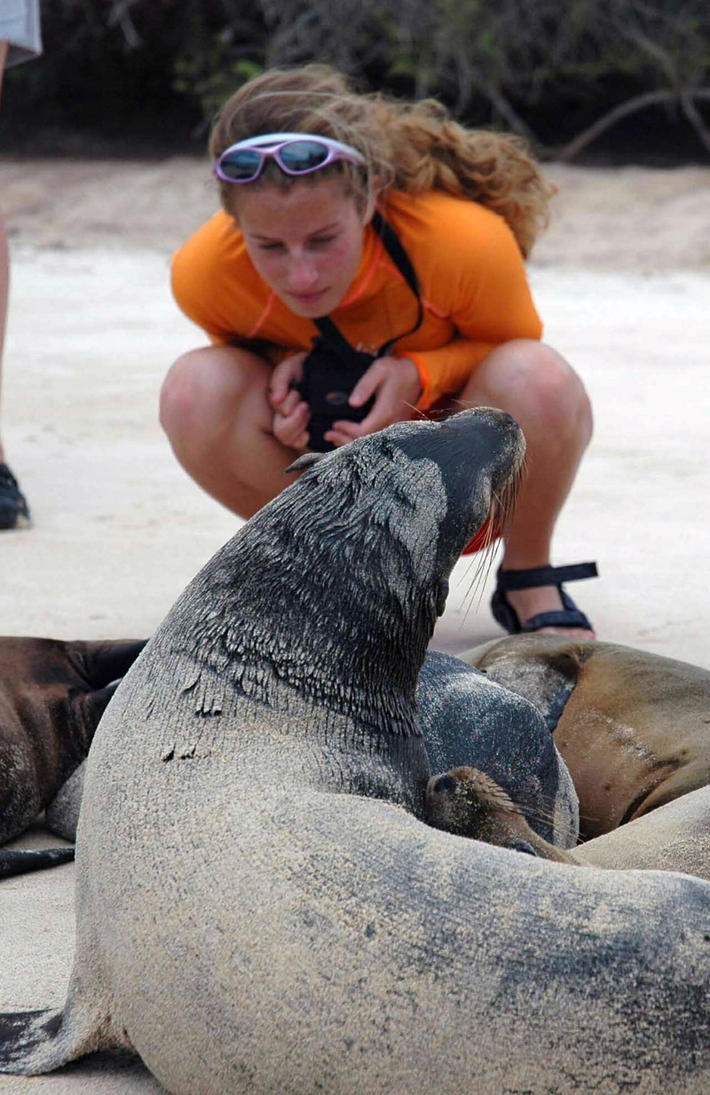 Photo: Studying a sea lion