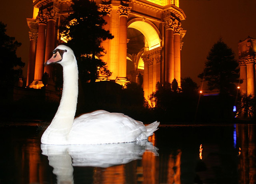 Photo: Palace of Fine Arts