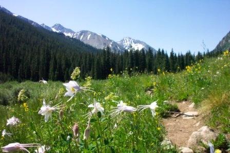 Photo: Colorado