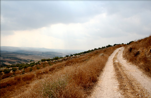 Photo: A road in Israel