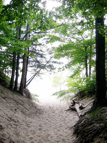 Photo: Saugatuck Dunes State Park
