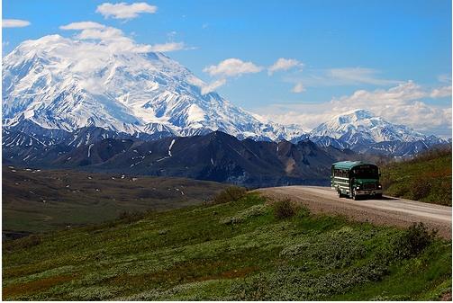 Photo: Denali National Park