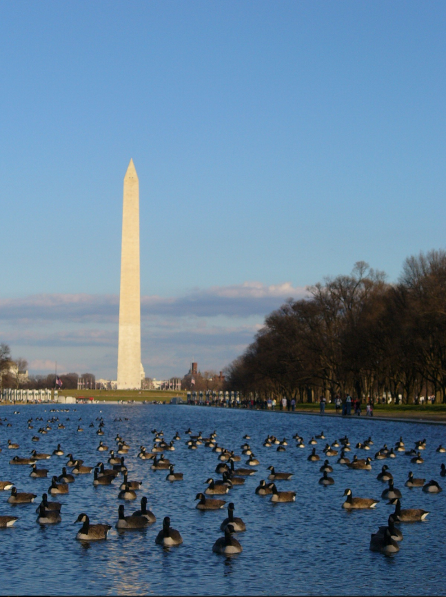 Photo: Washington Monument