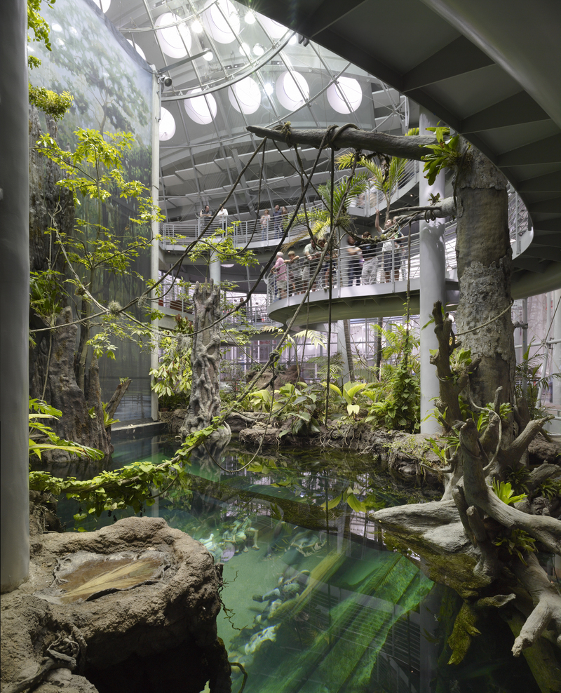 Photo: California Academy of Sciences